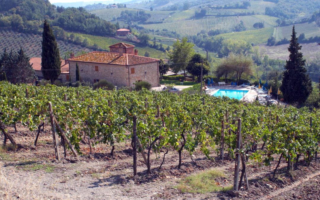 Il vino come ambasciatore del made in Italy